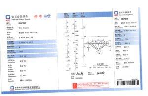 NGTC report certificate
